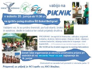 piknik  2015
